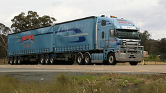 Hume Cabovers (2/3) (Jungle Jack Movements (ferroequinologist)) Tags: kenworth freightliner argosy kw kenny bowning yass nsw new south wales australia hume highway hp horsepower big rig haul haulage freight cabover trucker drive carry delivery bulk lorry hgv wagon road nose semi trailer deliver cargo interstate articulated vehicle load freighter ship move roll motor engine power teamster truck tractor prime mover diesel injected driver cab cabin loud rumble beast wheel exhaust double b grunt teeman k200 leeton jimboola nightingale freighlines jeftomson apple pear