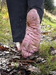 Wet leaves (Barefoot Adventurer) Tags: barefoot barefooting barefooter barefoothiking barefeet baresoles barefooted barfuss winterbarefooting winter wetmud wetsoles callousedsoles connected callouses earthsoles earthing earthstainedsoles energy newyear happyfeet wrinkledsoles woodlandsoles naturalsoles nature naturallytough naturallybarefoot naturally hardsoles hiking healthyfeet ruggedsoles roughsoles forestwalk muddyfeet muddysoles coldsoles