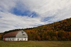 la grange ... en écoutant : https://www.youtube.com/watch?v=Vppbdf-qtGU (jean-marc losey) Tags: canada québec saguenay parc lagrange randonnée automne autumn d700