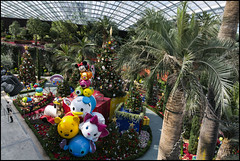 _SG_2018_11_0496_IMG_4044 (_SG_) Tags: holiday citytrip four cities asia asia2018 2018 singapore marina bay sands garden by republic southeast island city state merlion financial district resort mascot lion fish river park flyer ferris wheel flower dome cloud forrest