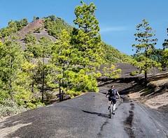 Happy New Sunny Cycling Year! We wish you great trails and roads for your ultimate cycling experience during the new season. Frohes neues und sonniges Bike-Jahr! Wir wünschen Dir beste Trails und Straßen für unvergessliche Ausfahrten im neuen Jahr. #konst