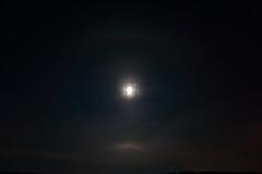 Moon halo_2019_01_18_0001 (FarmerJohnn) Tags: kuu kuutamo moonlight reflection heijastus haloilmiö halo moonhalo night yö talvi winter january tammikuu hanki snowfield lumi miljoonatimanttiahangella snow canoneos5dmarkiii canonef163528liiusm canon 5d markiii suomi finland valkola anttospohja juhanianttonen