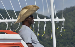 Perfil (Márcia Valle) Tags: man portrait retrato homem niterói regata regatta chapéu hat vento wind márciavalle nikon brasil brazil perfil