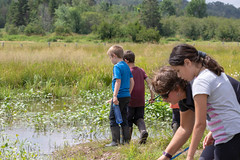 _MG_3822.jpg (joanna.mills) Tags: pond forestschool roachville tirnanog play livewell diabetesnb henry bienvivre