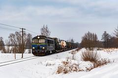 SU46-029 (Mariusz Sychowicz) Tags: pkp pkpcargo cargo polskakolej suka train su46 hcp hcp303d diesellok madeinpoland polishtrain lokomowtywa railway railwayphotography