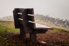 Morning in the bay (MJ6606) Tags: grass trees ocean winter bay nature water bench leaves park fog wood morning florida