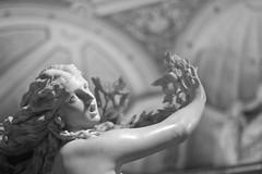 #MeToo (gcarmilla) Tags: bernini daphne ovid metamorphoses metamorfosi dafne roma biancoenero statue statua bw blackandwhite