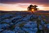 Winskill Stones (Sandra Lipproß) Tags: limestonepavement sunset star nature outdoor landscape yorkshire yorkshiredales malham uk england greatbritain tree rocks geology sky clouds winskillstones sunburst flare