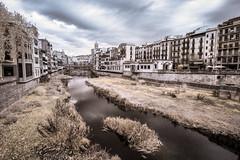 Girona (Adventures in Infrared) (Torsten Reimer) Tags: girona olympusepl5 fluss europa himmel buildings gebäude clouds catalonia tree riverfront spain infrared river riverbank wasser water sky wolken katalonien europe spanien infrarot gerona catalunya es
