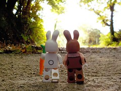 Life in the wood's (Lego Custom Zone) Tags: lego minifigure toy rabbit love tree wood dating life bunny march harriet spring carrot date valentines minifigs toys