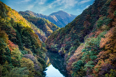 Oigami river in Autumn (kellypettit) Tags: japan gunma oigami onsennaturalhotspring landscapephotography riverrunsthroughit autumn fall fallcolours autumncolours leadinlines mountains endlessmountains