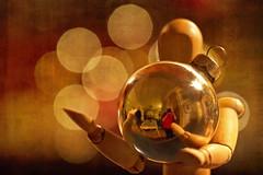 balance (1crzqbn) Tags: macromondays balance christmas reflections bokeh macro gold dof