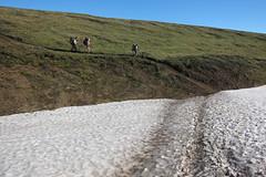 Iceland ~ Landmannalaugar Route ~  Ultramarathon is held on the route each July (Onasill ~ Bill Badzo) Tags: iceland landmannalaugar route trail hiking snow mountain nature sky clouds onasill landmark historic hdr landscape july reykjavík ultramannalaugar outdoor trekking