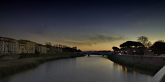The Migrating Birds of Pisa (EricMakPhotography) Tags: bird river arno sunset dusk migrate display reflection europe