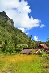 A Bras Sec, Cirque de Cilaos, Reunion Island (Olivier Nery 974) Tags: reunionisland 974 cilaos casecréole piton îledelaréunion indianocean océanindien brassec