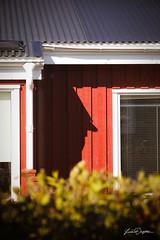 Face on a wall ... (FotoLind) Tags: iceland ísland lindaólafsdóttir lindamyndar fotolind fotolinda house shadow sun red