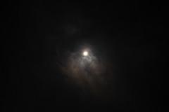 DSCF4001-4.jpg (madaday) Tags: nightsky lunareclipse space sky night moon stars filters edited