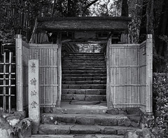 The entrance to Shisendo (Tim Ravenscroft) Tags: shisendo kyoto entrance gate steps japan hasselblad hasselbladx1d monochrome blackandwhite blackwhite