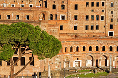 Almost Abstract, Via dei Fori Imperiali, Rome (Claudio_R_1973) Tags: romafora imperialfora viadeiforiimperiali obelisk ruin archaeology park abstract landscape cityscape old historical rome roma italy italia capital ethernal