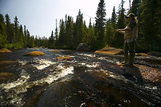 Newfoundland Caribou and Moose Hunting 12