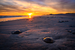 A Clam's View (djrocks66) Tags: sunset sunsets oceanscape oceanscapes waterscape waterscapes nature outdoors beach ocean waves seagulls fishing color sky clouds sand clams shells stones dunes shore sea seashore boating nikon z6 pink orange sun landscapes