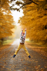 High five, we survived daylight savings time! (Elizabeth Sallee Bauer) Tags: nature active autumn beautyinnature boy child childhood cozy destination fall fallleaves fun gold green hat hiking journey kid leaves nonurbanscene outdoors outside playing redhat road trail trees walking yellow youth