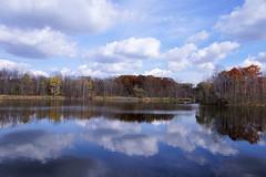 Maybury-State-Park-Pond_Northville-MI_10-28-2011g (Count_Strad) Tags: mayburystatepark maybury state park northville mi michigan pond lake