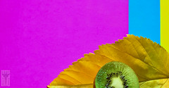 "#InspiraciónBdF87 ""The colors of the Kiwi"" (MARITAWE) Tags: inspiraciónbdf87 spiritofphotography"