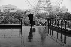 Heavy baggage and rain (reiko_robinami) Tags: street streetphotography monochrome blackandwhite urban outdoors rain reflection cityscape yokohama japan