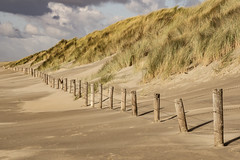 offroad - free thoughts (Wöwwesch) Tags: beach dunes wind walking northsea netherlands thoughts offroad longway free breath alone miles sand