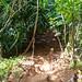 Weg zum Hideaways Beach Princeville Kauai Hawaii