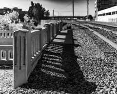 (el zopilote) Tags: albuquerque newmexico architecture street cityscape bridges railroads powerlines signs canon eos 5dmarkii canonef50mmf14usm fullframe bw bn nb blancoynegro blackwhite noiretblanc digitalbw bndigital schwarzweiss monochrome