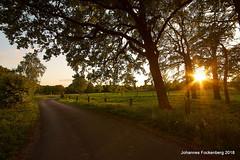 Feierabend (grafenhans) Tags: sony alpha 68 a68 alpha68 slt sigma 1020 uww sonnenuntergang sonne abendsonne abendlicht feldweg sonnenstrahlen grafenwald bottrop nrw natur landschaft landscape licht light