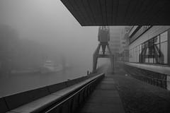 20181106-ptrckptrsndt-hfnelfi-17.jpg (ppsundt) Tags: hafen hafencity kran fog nebel harbour hamburg