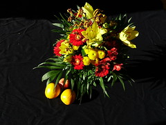 DSC08707 (McMunich) Tags: mcmunich münchen blumen flower flowers bunt colourful magic magisch elegant gelb rot red yellow park botanicalgarden botanischergarten