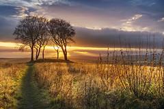 Copt Hill, Houghton-le-Spring (DM Allan) Tags: copthill houghton sunderland wearside sunset golden bronzeage barrow historic breathtakinglandscapes