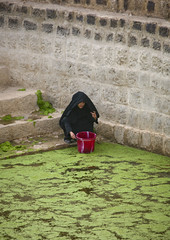 Woman Taking Water From A Cistern Covered By Lentils, Shahara, Yemen (Eric Lafforgue) Tags: adult arabia arabiafelix arabianpeninsula architectural architecture bucket cistern colourpicture dailylife day duckweed float fulllength historical history inblack jebelalamir jebelfeesh oneperson onewoman placeofinterest realpeople squat stairs vertical villagetank water woman yemen yemeni younggirl img6984 shahara