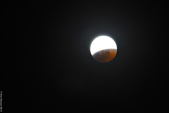 eclipse_2019_0 (acritely) Tags: bloodmoon 2019 eclipse usa wolfmoon