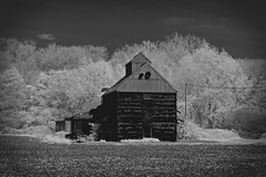 Black Barn (Infrared) (nigdawphotography) Tags: barn farm arable corrugated black infrared matchingtye essex