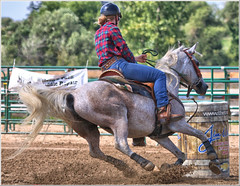 Paris Fair - Barrel Racing 10 (Looking for something to post!!) Tags: canon eos 70d 70200mm ef70200f4l psp2018 paintshoppro2018 efex topaz paris fair ontario canada horses equestrian sport action competition barrelracing geotagged