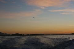 South End Dawn (whitebear100) Tags: sunrise dawn kaikoura southisland nz newzealand 2019