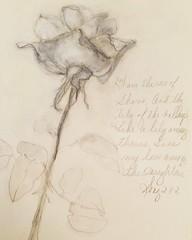 Graphite rose by Jan Paron, 2019 #graphite #abstractflower #flowers (drjparon) Tags: graphite abstractflower flowers