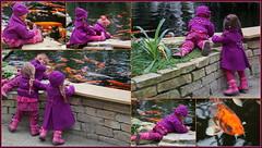 Fischen mit den Kindergartenkinder ... (Kindergartenkinder 2018) Tags: schloss arcen kindergartenkinder annemoni milina sanrike tivi