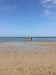 Support (hannaschmitz) Tags: capecod ma massachusetts sandwichma beach shore water sand sky nature