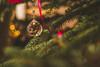 Christmas Tree decor Cristal (wuestenigel) Tags: holidays glitter sunrise decor background tree bokeh gold cxmas christmas indoors rocks crystal holy summer colorful celebration studio green pink lights leaves colors merry moodyholidays beautiful backround red weihnachten winter ball noperson keineperson blur verwischen decoration dekoration sphere kugel feier newyear neujahr baum color farbe light licht hanging hängend pine kiefer dof shining leuchtenden insubstantial unwesentlich fir bright hell