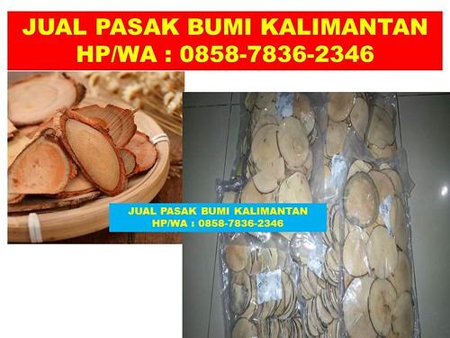 PROMO!!!, WA/Telp 0858-7836-2346, Tongkat Ali Herbal