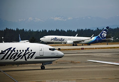 Alaska Ops @ KSEA (Infinity & Beyond Photography: Kev Cook) Tags: alaska airlines boeing 737 b737 aircraft airplanes seattle ksea international airport planes seatac