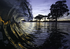 Reflektor (Omnitrigger) Tags: surf wave beach swell beachbreak shorebreak dawnpatrol california nature ocean sunrise