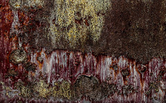 Phylogenesis (Junkstock) Tags: abstraction abstract california color corrosion corroded decay decayed textures texture vista