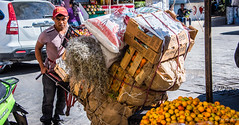 2018 - Mexico - Oaxaca - Produce to You (Ted's photos - Returns late Feb) Tags: 2018 cropped mexico nikon nikond750 nikonfx oaxaca tedmcgrath tedsphotos tedsphotosmexico vignetting ballcap male man cart produce oranges streetscene street delanofarms loaded bigload producedelivery centrooaxaca oaxacaoaxaca